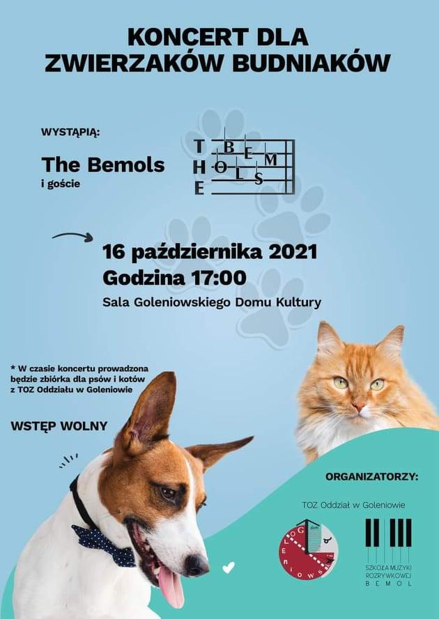The Bemols